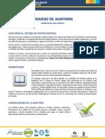 procesoauditoria.pdf