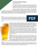 Preparación de Cerveza Artesanal