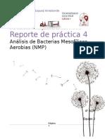 Reporte Microbiología 4
