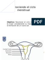 Biología Ciclo Menstrual 7mo