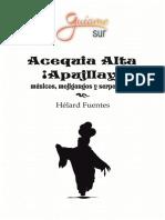 Acequia Alta ¡Apujllay! Músicos, mojigangos y serpentinas