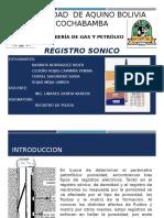 REGISTRO SONICO-1 (1).pptx.pptx