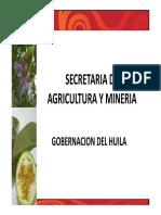 Gobernacion_origen de Cholupa Del Huila