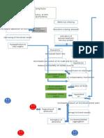 pathophysiology (Autosaved).docx
