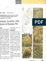 94586789-Cactus-y-Suculentas-de-Moquegua-Quepo-2010.pdf