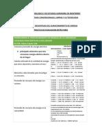 PRACTICA DE EVALUACION ENTRE PARES ISIDORITO.pdf
