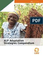 Adaptation Strategies Compendium