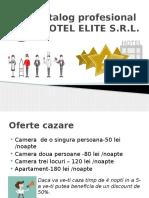 Catalog Profesional Berilov Si Visan