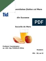 Implementare HACCP Pentru Sucul de Mere