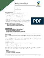 modified rules for primary school cricke