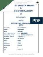 Dairy Business Proposal.pdf
