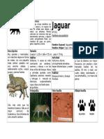 Ficha Completa Jaguar