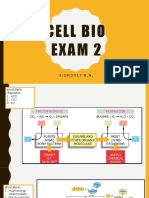 Cell Biology Diagrams