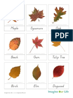 3PartCards-AutumnLeaves2