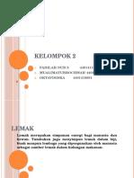 KELOMPOK 2 LEMAK.pptx