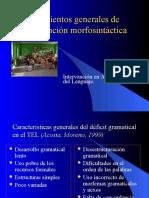 73709044-INTERVENCION-MORFOSINTAXIS.ppt