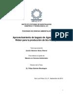 Proyecto.aprovechamiento de Bagazo de Agave Tequilana