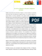 Caracteristicas de Los Sistemas Culturales Indigenas Actuales