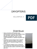 Generasi Gametofit Dryopteris
