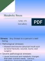 Metabolic Stress Web