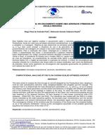 2009 Paper Análise Computacional Do Escoamento Sobre Uma Aeronave Otimizada Em Escala Reduzida