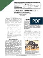Deteccion del Celo.pdf