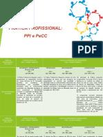 10- Prática Profissional - PPI e PeCC