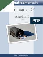 C. Carboncini et al - Algebra1- 6ed. Matematicamente.it 2015.pdf