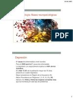 Procesos Neuropsicol%C3%B3gicos II Depresi%C3%B3n