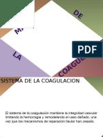 V. Sistema de La Coagulacion