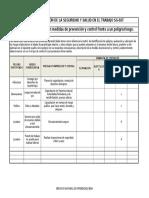 Matriz de Jerarquización Con Medidas de Prevención y Control Frente a Un Peligro y Riesgo