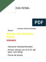 Cgap Renal 1- 2013 Correg