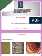 Nematóides de infecção ativa (1).pdf