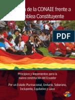 CONAIE, Propuesta de La CONAIE Frente a La Asamblea Constituyente