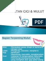 4. Kesehatan Gigi & Mulut