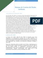 ISO 14001 Sistema de Gestión Del Medio Ambiente