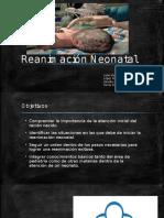 Reanimación Neonatal Presentacion (2)