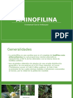 aminofilina
