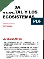 La Vida Vegetal y Los Ecosistemas Presentacion