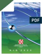 KIG 2020 final report.pdf