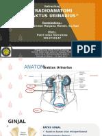 Radioanatomi traktus urinarius