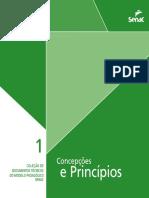 DT 1 Concepcoes e Principios