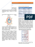 Fisio 2- Sistema Circulatorio- Capsula 1