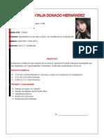 Curriculum Planes Barcenas