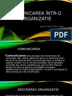 Tema Comunicarea Într o Organizatie