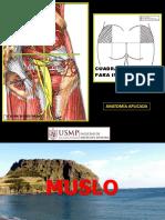 INGUINOCRURAL MUSLO ANTER.pdf