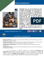 Diapositivas Exposicion Poblaciones Vulnerables