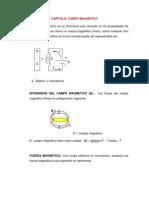 CAPITULO CAMPO MAGNETICO (3)