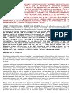 PROYECTO DE REFORMA CNPP.pdf