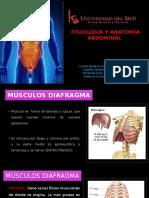 1. Anatomía Fisio y Semio Abadomen (1)